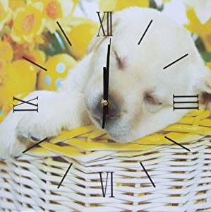 Square Kitchen Dining  Room Wall Clock  - Puppy